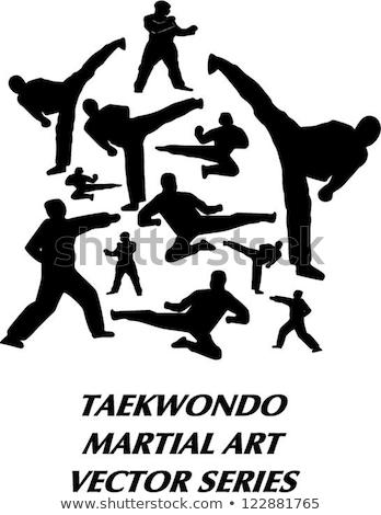 Pessoas artes marciais ilustração branco mulheres fitness Foto stock © bluering