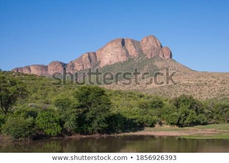 Bokrok hegy kilátás kék út nap Stock fotó © markdescande