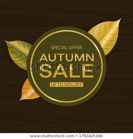 autumn leaves backgroundvector stock photo © fresh_5265954