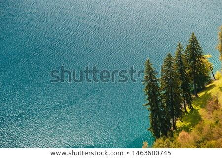 Luchtfoto pine bomen meer evergreen Stockfoto © stevanovicigor