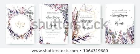 Floral conjunto mão pintado aquarela Foto stock © pakete
