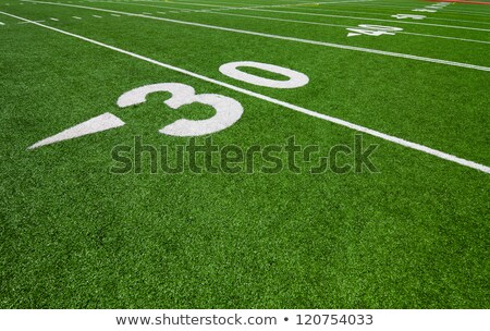 Football thirty yard marker Stock photo © njnightsky