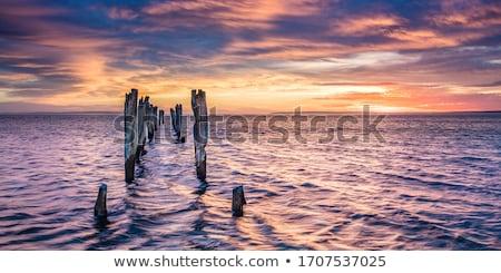 Tengerparti tájkép kenguru sziget üldözés park Stock fotó © dirkr