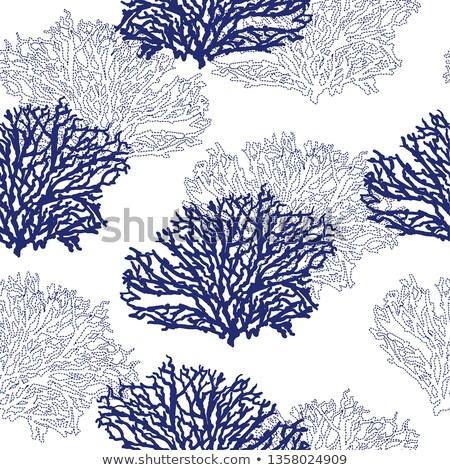 Blauw mariene patroon water muur abstract Stockfoto © adamson