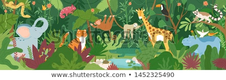 Giraffes and hippo by the pond Stock photo © bluering