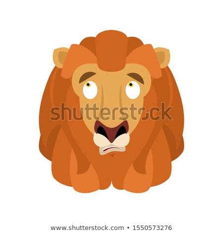 Lion confused emoji face avatar. Wild animal is perplexed emotio Stock photo © popaukropa