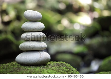 Balance zen stones on green grass Stock photo © cienpies