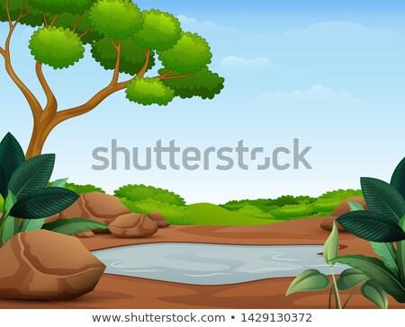 Sáros pocsolya föld illusztráció természet háttér Stock fotó © bluering