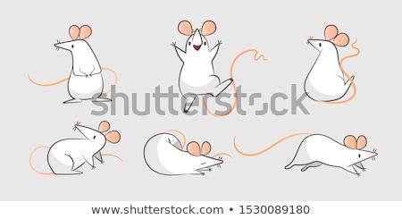 white rat sits on the hand stock photo © oleksandro