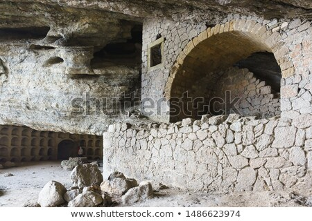 Ours montagne grotte illustration famille maison Photo stock © bluering
