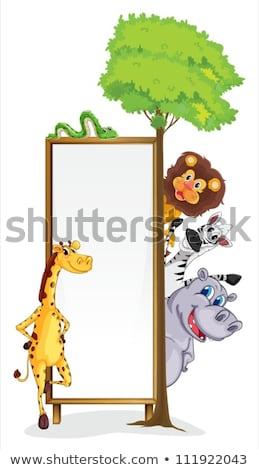 Houten frame illustratie bos natuur achtergrond Stockfoto © bluering