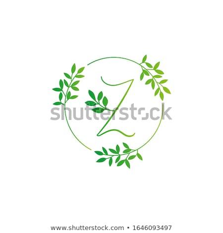 eco green circle leaf letter z symbol logo vector icon stock photo © blaskorizov