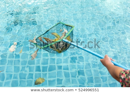 Cleaning swimming pool with cleaning net in the morning Stock photo © galitskaya