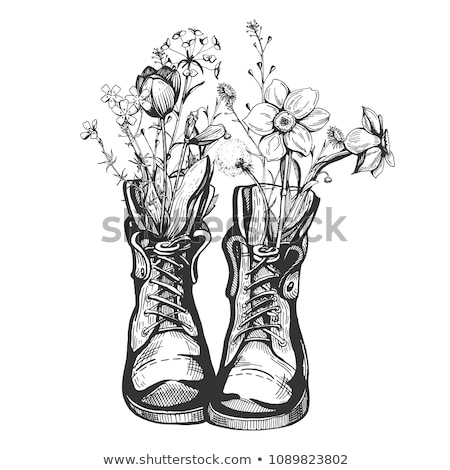 Flower Boots Illustration Stock photo © lenm