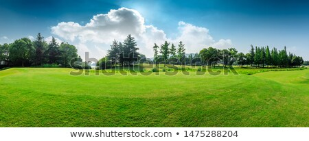 Panoramic landscape with beautiful white clouds and fields on a  Stock photo © artjazz