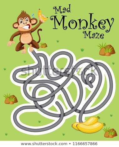 Scimmia follia gioco modello illustrazione bambini Foto d'archivio © colematt