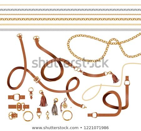 vector set of belt Stock photo © olllikeballoon