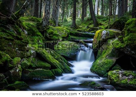 Berg stream rotsen ingesteld watervallen beneden Stockfoto © lovleah