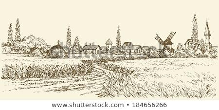 Windmill near wheat field Stock photo © jossdiim