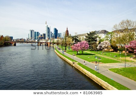 embankment of Main, Frankfurt, Germany Stock photo © borisb17