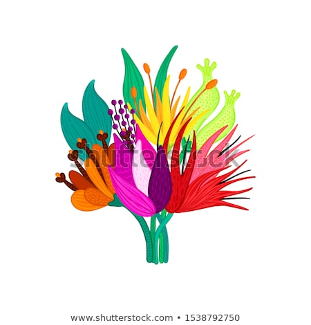 Bouquet of beautiful colorful flowers. Speckled petals. Hand-drawn plants. Floral arrangement. Bunch Stock photo © user_10144511
