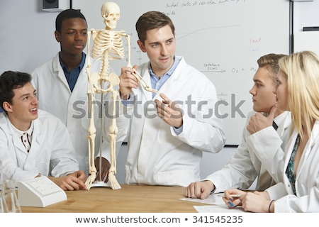 Teacher With Model Of Human Skeleton In Biology Class Stock photo © HighwayStarz