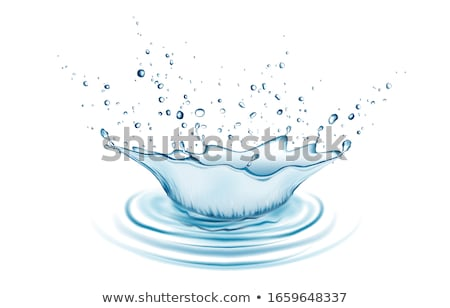 Realistic Water splashes with bubbles spray and drops Stock photo © LoopAll