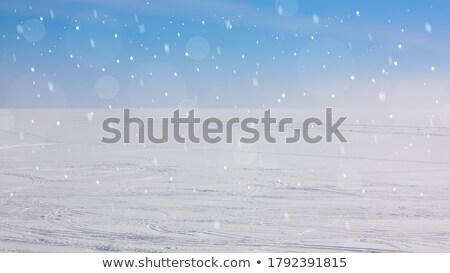 Winter christmas witte Blauw wazig Stockfoto © MarySan