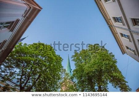 Riga katedral eski evler kasaba yeşil Stok fotoğraf © artjazz