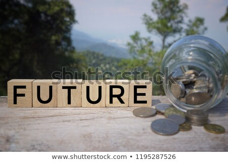 Prepare the budget concepts of better financial planning Stock photo © johnkwan