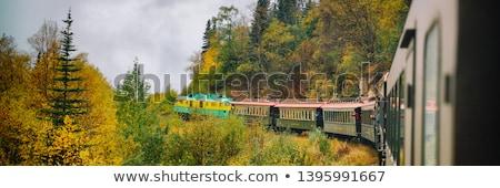 Alaska train White Pass and Yukon route railroad railway ride on old transport rails in Alaska, USA. Stock photo © Maridav