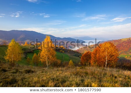Distant Mountain View with Clouds Stock photo © 2tun