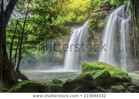 Cachoeira escondido denso névoa para cima Foto stock © mtilghma