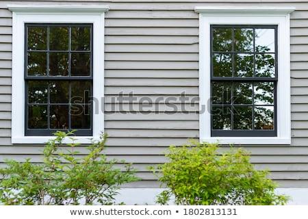 Dış pencereler iki aynı modern binalar Stok fotoğraf © Balefire9