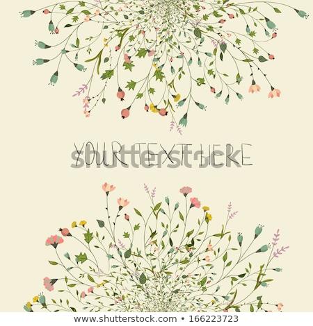 структур место текста вектора аннотация красоту Сток-фото © christina_yakovl