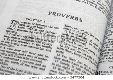 A passage from the Book of Proverbs Stock photo © skylight
