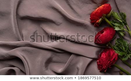 атласных лист Purple фото текстуры Сток-фото © tdoes