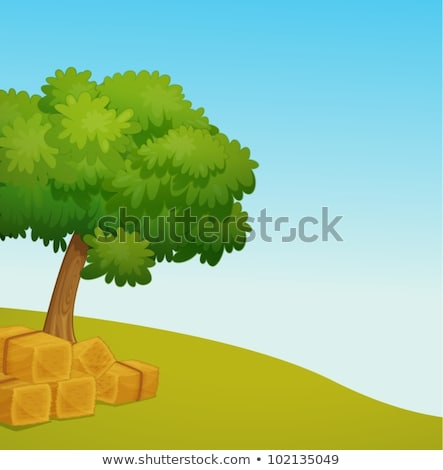 stro · rollen · baal · blauwe · hemel · natuur - stockfoto © samsem