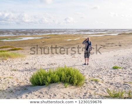 Man at Dutch wadden sea Stock photo © ivonnewierink
