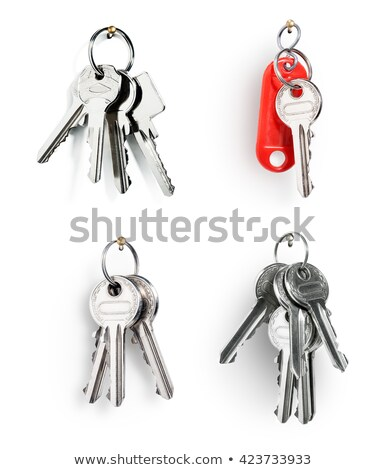 collection keys with a blank tag on a white background stock photo © inxti