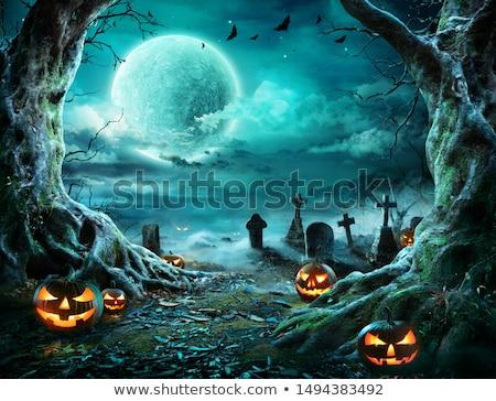 Halloween notte albero casa luna bat Foto d'archivio © WaD