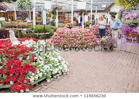Outside of garden center with many types of plants and flowers and couple pushing a trolley Stock photo © wavebreak_media