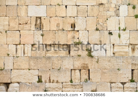 Wailing Wall Prayers Stock photo © eldadcarin