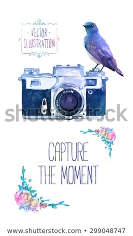 photography logo concept in pink and blue stock photo © shawlinmohd