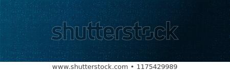 Segurança de dados escuro digital azul cor texto Foto stock © tashatuvango