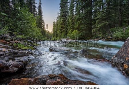 Stockfoto: Sunrise On Remote River