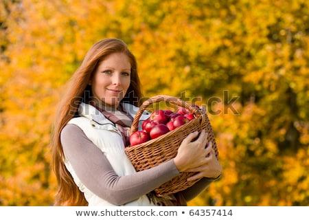 Fiatal nő kosár almák nő ház nap Stock fotó © monkey_business