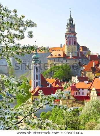 floraison · verger · printemps · République · tchèque · arbre · paysage - photo stock © phbcz