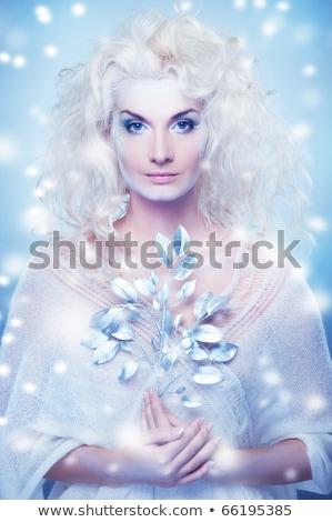 neve · rainha · magia · galho · menina · cara - foto stock © nejron