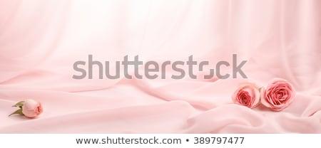roze · groene · satijn · textiel · achtergrond - stockfoto © neirfy